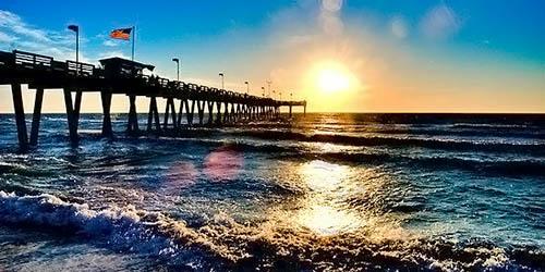 Venice Florida Properties
